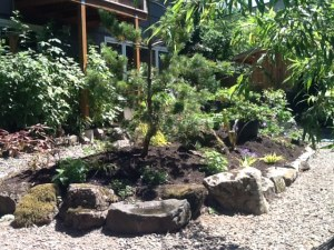 My Meditation Garden!